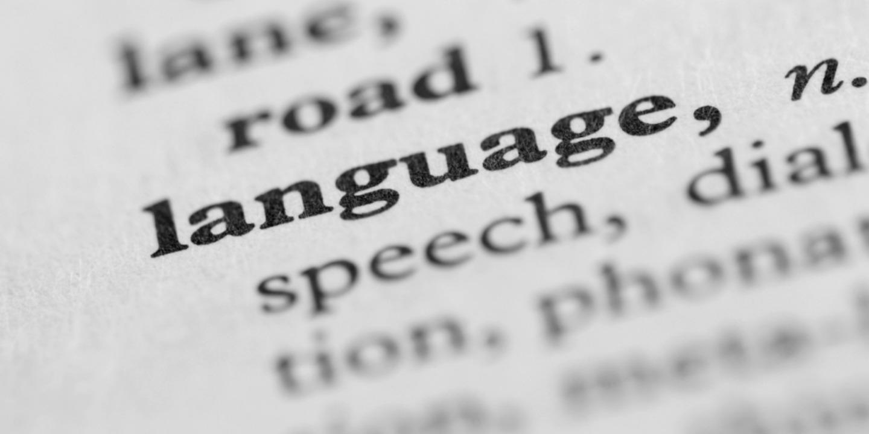 language image