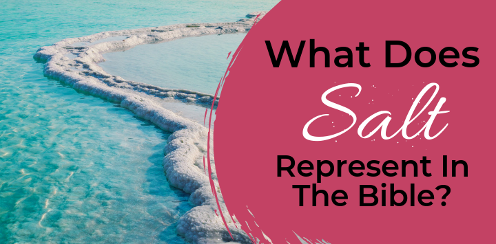 What does salt represent in the bible