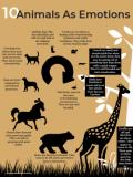 Animals As Emotions thumb
